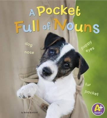 A Pocket Full of Nou...