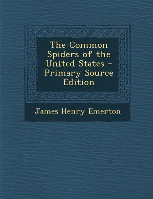 Common Spiders of the United States