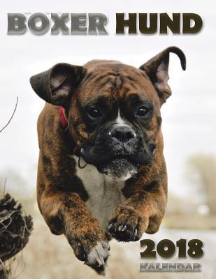 Boxer Hund 2018 Kale...