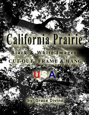 California Prairie