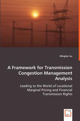 A Framework for Transmission Congestion Management Analysis