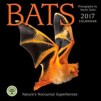 Bats 2017 Calendar