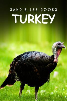Turkey - Sandie Lee Books