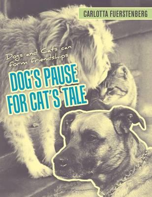 Dog's Pause for Cat's Tale