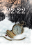 Cover of 22:22