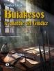 Cover of Buiakesos, le guardie del giudice