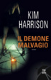 Cover of Il demone malvagio