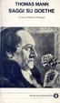 Cover of Saggi su Goethe