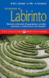 Cover of Iniziazione al labirinto