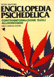 Cover of Enciclopedia psichedelica