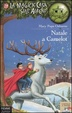 Cover of Natale a Camelot