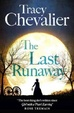 Cover of The Last Runaway