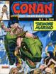 Cover of Conan il barbaro Colore n. 8