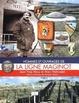 Cover of Hommes et ouvrages de la Ligne Maginot