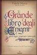 Cover of Il grande libro degli enigmi