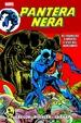 Cover of La rabbia della Pantera Nera