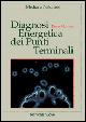 Cover of Diagnosi energetica dei punti terminali