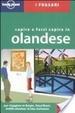 Cover of Capire e farsi capire in olandese