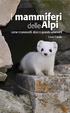 Cover of I mammiferi delle Alpi