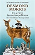 Cover of Un cervo in metropolitana