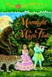 Cover of Moonlight on the Magic Flute