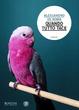 Cover of Quando tutto tace