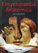 Cover of Encyclopaedia Anatomica