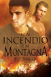 Cover of Un incendio in montagna