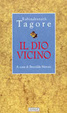 Cover of Il dio vicino