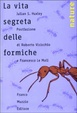 Cover of La vita segreta delle formiche
