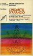 Cover of L'incanto d'arancio