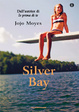 Cover of Silver bay