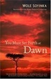Cover of You Must Set Forth at Dawn