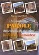 Cover of Dizionario di