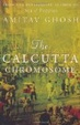 Cover of The Calcutta Chromosome