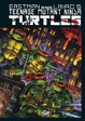 Cover of Teenage Mutant Ninja Turtles vol. 6