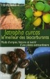 Cover of Jatropha Curcas, le meilleur des biocarburants