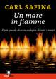 Cover of Un mare in fiamme. Il più grande disastro ecologico di tutti i tempi