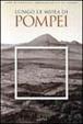 Cover of Lungo le mura di Pompei