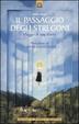 Cover of Il passaggio degli stregoni