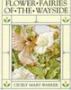 Cover of Flower Fairies of the Wayside