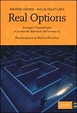 Cover of Real options