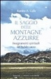 Cover of Il saggio delle montagne azzurre