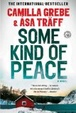 Cover of Some Kind of Peace: A Novel