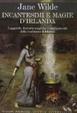Cover of Incantesimi e magie d'Irlanda. Leggende, formule, cure e rimedi per dolori e malattie dalla tradizione folclorica