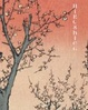Cover of Hiroshige, 100 Views of Edo