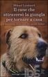 Cover of Il cane che attraversò la giungla per tornare a casa