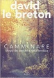 Cover of Camminare