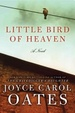 Cover of Little Bird of Heaven