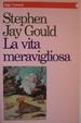 Cover of La vita meravigliosa